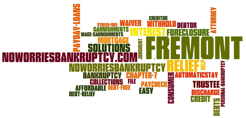Fremont Bankruptcy Attorney 100 To Start Free Consultations