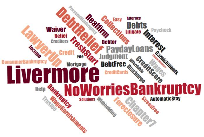Best bankruptcy lawyer in Livermore
